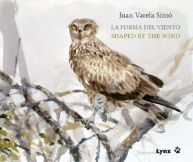 FORMA DEL VIENTO / SHAPED BY THE WIND